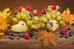 Fruit hedgehogs Royalty Free Stock Photos
