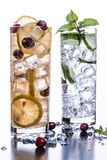 Fruit and Herb Sparkling Water Beverages. Thirst quenching summer beverages flavored with fruit and herbs Stock Images