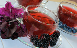Fruit/herb teas with fruit Stock Photography