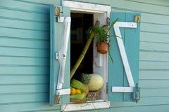 Fruit in het venster Stock Afbeeldingen
