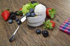 Fruit ice cream Royalty Free Stock Images