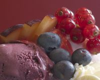 Fruit and Ice Cream. Please see my other food images. Delicious close up of blueberries, red currants and plum on ice cream and cream royalty free stock images