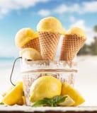 Fruit ice cream Stock Photography