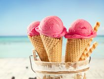 Fruit ice cream Stock Photography