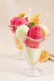 Fruit ice-cream. Stock Photo