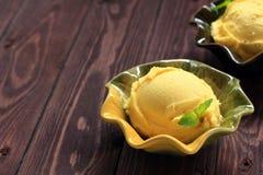 Fruit ice cream. Royalty Free Stock Images