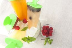 Fruit ice cream. In a pail decorated with berries and mint royalty free stock image