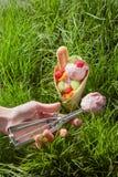 Fruit ice cream in waffle cone Stock Photo