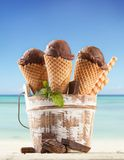 Fruit ice creams Stock Image