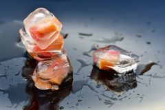 Fruit in ice cubes. Stock Image