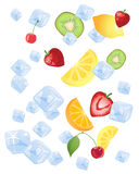 Fruit on ice Stock Images