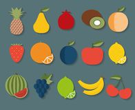 Fruit icon. The image of fruits and berries symbol Stock Image