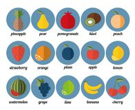 Fruit icon. The image of fruits and berries symbol Royalty Free Stock Photography