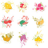 Fruit Icon Set Stock Photo