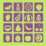 Fruit Icon Set. The fruit Icon Set collection Stock Photography