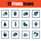 Fruit icon set. Shadow reflection design. Vector illustration Stock Images
