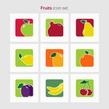 Fruit icon set simple flat vector illustration.  vector illustration