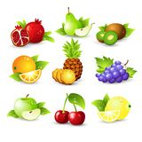 Fruit icon set. Vector Illustration Royalty Free Stock Photo