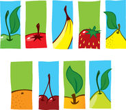 Fruit Icons. Series of fruit icons in stylized form Stock Images