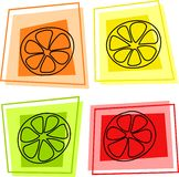 Fruit icons. Fruit slice icons - orange, lemon, lime, grapefruit Royalty Free Stock Photo