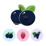 Fruit Icons, Blueberries, Raspberries ,Grapes Stock Photography