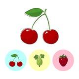 Fruit Icons, Cherry, Gooseberry , Strawberry Royalty Free Stock Photos