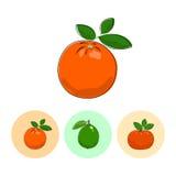 Fruit Icons, Orange, Lime , Mandarin Stock Photography