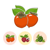 Fruit Icons, Persimmon , Lichee ,  Watermelon Stock Image