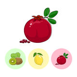 Fruit Icons, Pomegranate ,Lemon , Kiwifruit. Fruit  Pomegranate   on White Background , Set of Three Round Colorful Icons Kiwifruit, Lemon and Pomegranate Stock Images