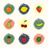 Fruit icons. Set of icons with fruits in grunge style Stock Photos
