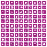 100 fruit icons set grunge pink. 100 fruit icons set in grunge style pink color isolated on white background vector illustration Stock Image
