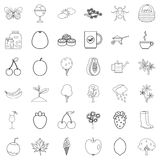 Fruit icons set, outline style. Fruit icons set. Outline style of 36 fruit vector icons for web isolated on white background Stock Image
