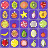 Fruit icons. Vector graphic illustration design art Stock Photography