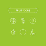 Fruit icons. Vector illustration in line style Royalty Free Stock Image