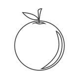 fruit ikony pomarańcze Zdjęcia Stock
