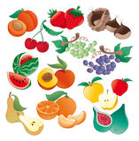 Fruit -  illustration Stock Image
