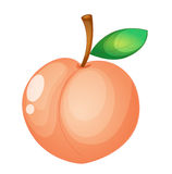Fruit illustration Royalty Free Stock Photography