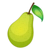 Fruit illustration Royalty Free Stock Images