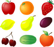 Fruit illustration Stock Photography