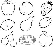 Fruit illustration Stock Image