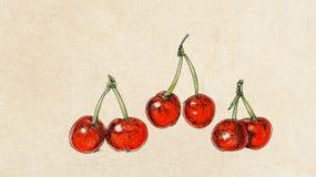 Fruit, illustration of cherries mix fruit Royalty Free Stock Images