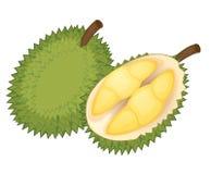 Fruit illustration Royalty Free Stock Image