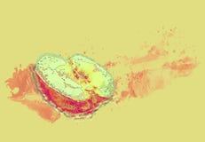 Fruit illustration Royalty Free Stock Photos