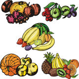 Fruit illustration series Royalty Free Stock Photos