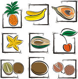 Fruit illustration series. A set of 9 vector illustrations of exotic fruits Royalty Free Stock Photography
