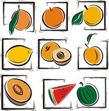 Fruit illustration series Stock Image