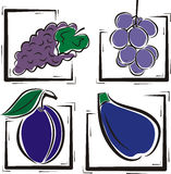 Fruit illustration series Royalty Free Stock Photo