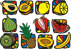 Fruit illustration series. A set of 11 vector illustrations of exotic fruits Stock Image