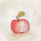 Fruit illustration with watercolor Stock Image
