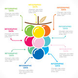Fruit info-graphics concept design Royalty Free Stock Images